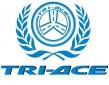 Зимние шины Tri-Ace
